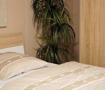 Bedsheets 4
